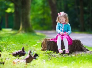Little girl feeding duck in a summer park. Children feed birds and animals. Child playing outdoors. Kids play in sunny autumn forest. Toddler kid watching wild bird. Preschooler exploring nature.